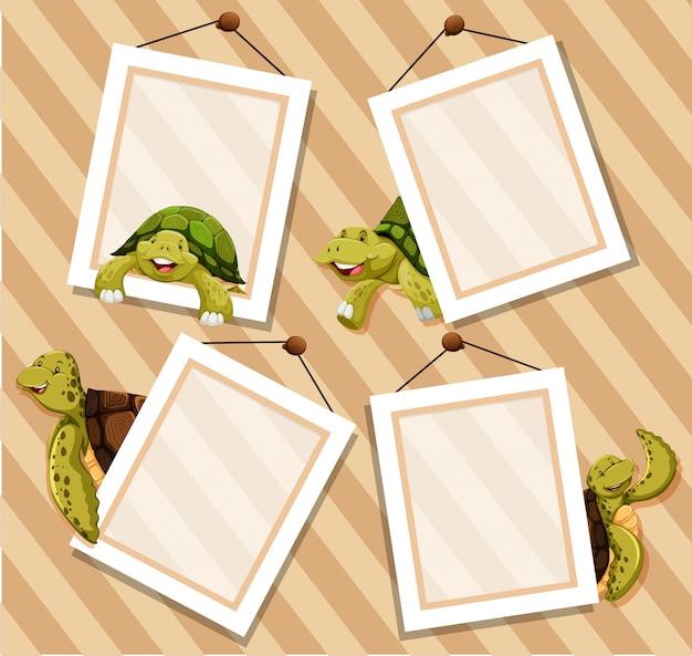 Frames op houten achtergrond met schildpadden Gratis Vector
