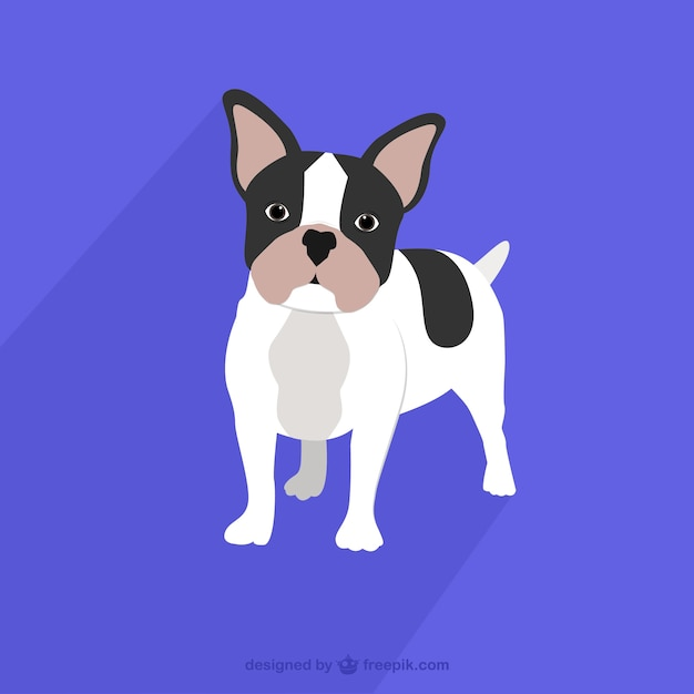 Franse bulldog tekening Gratis Vector