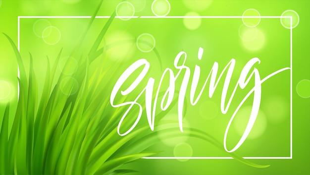 Frash lente groen gras achtergrond met handgeschreven letters. illustratie Premium Vector