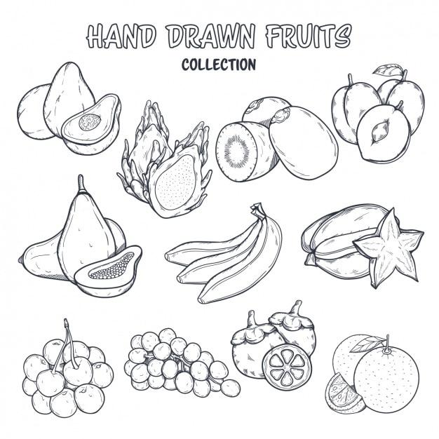 Fruit kleuring ontwerp Gratis Vector