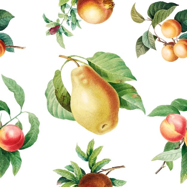 Fruit patroon achtergrond Gratis Vector