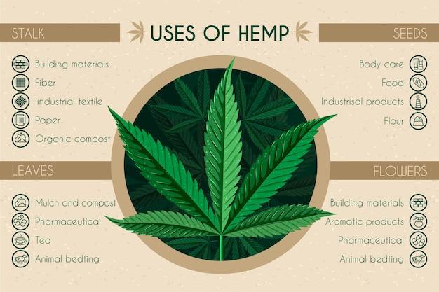 Gebruik van hennep infographic Gratis Vector