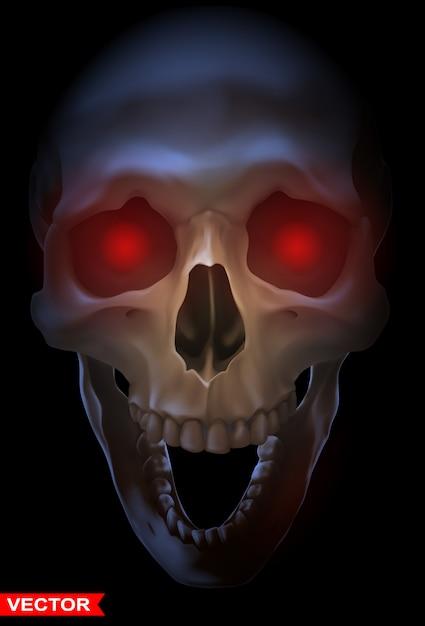 Gedetailleerde grafische fotorealistische menselijke schedel Premium Vector