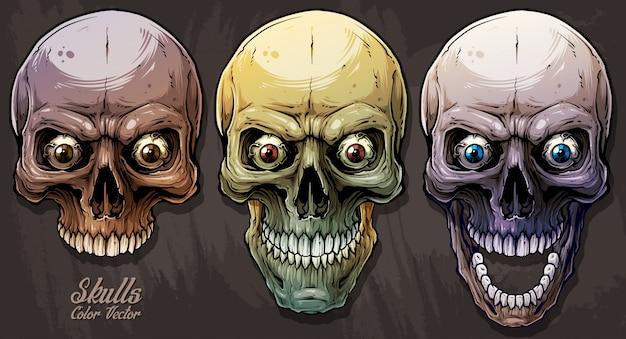Gedetailleerde grafische kleurrijke menselijke schedels instellen Premium Vector