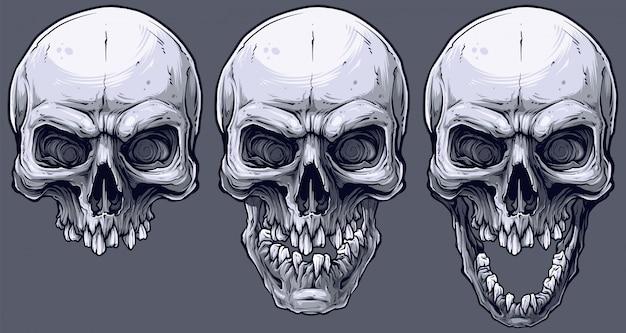 Gedetailleerde grafische zwart-witte menselijke geplaatste schedels Premium Vector