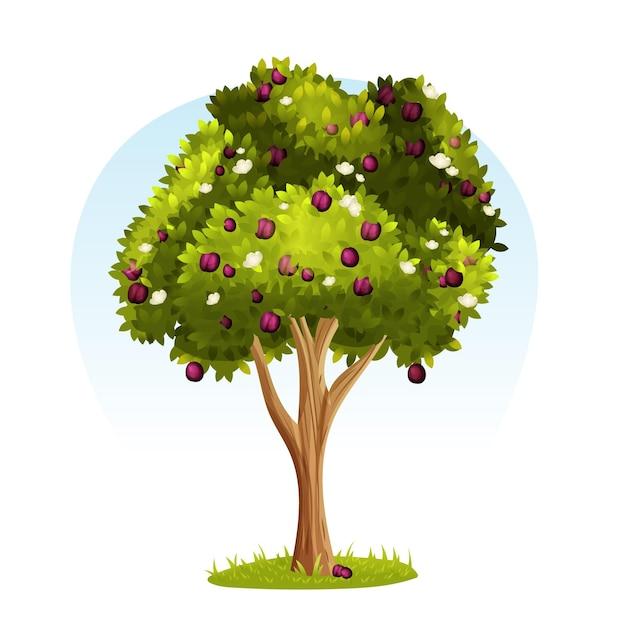 Gedetailleerde pruimenboom illustratie Gratis Vector