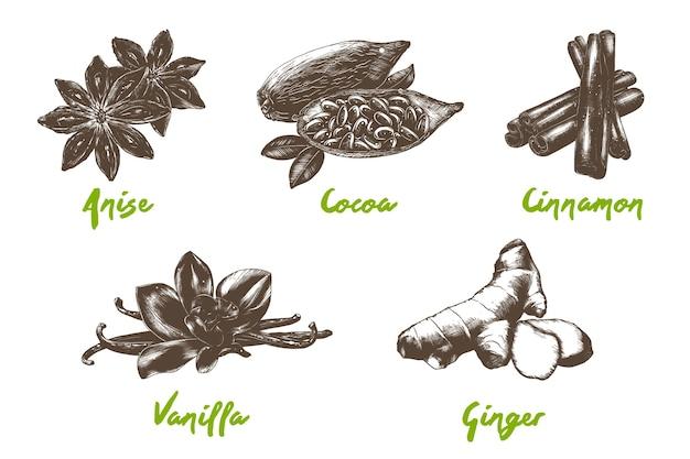 Gegraveerde stijl biologische kruiden en bonen collectie hand getrokken zwart-wit schetsen geïsoleerd op een witte achtergrond Premium Vector