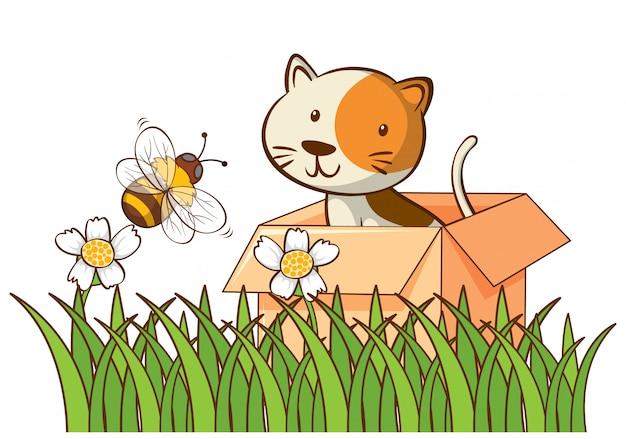 Geïsoleerde foto van schattige kat in de doos Gratis Vector