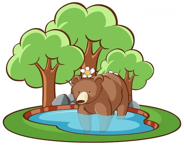 Geïsoleerde grizzly in de vijver Gratis Vector