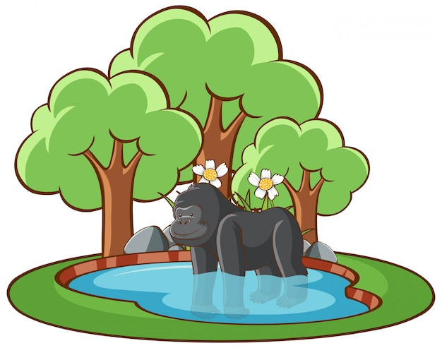 Geïsoleerde illustratie van gorilla in de vijver Gratis Vector