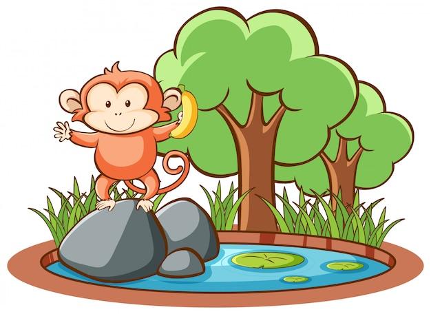 Geïsoleerde schattige aap Gratis Vector