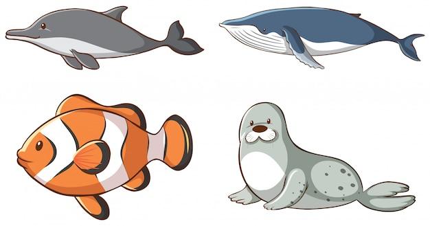 Geïsoleerde zeedieren Gratis Vector