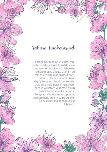 Gekleurde achtergrond met bloemenframe bestond uit prachtige roze bloeiende bloemen en knoppen van japanse sakura hand getekend met plaats voor tekst in het midden. Premium Vector