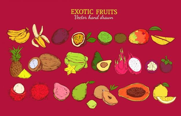 Gekleurde exotische en tropische vruchten set Premium Vector