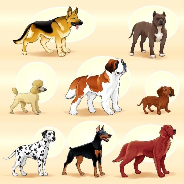 Gekleurde honden collectie Gratis Vector