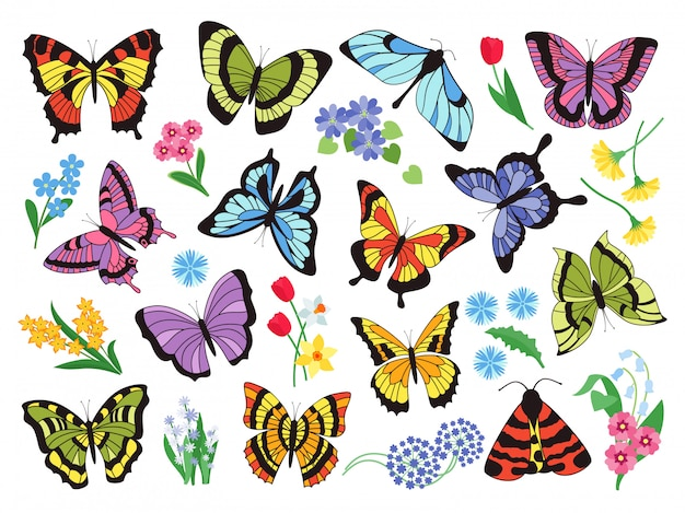 Gekleurde vlinders. hand getrokken eenvoudige verzameling vlinders en bloemen geïsoleerd op een witte achtergrond. grafische collectie getekende vintage vliegend insect Premium Vector