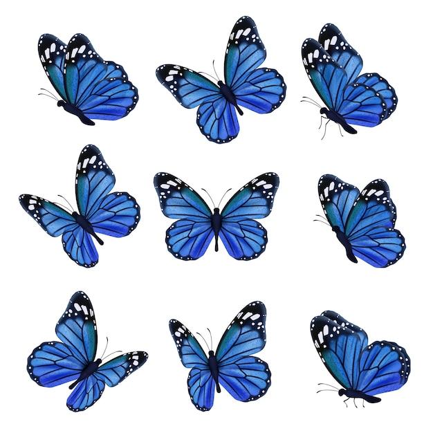 Gekleurde vlinders. vliegende prachtige insecten vlinder met versierde vleugels. illustratie insect vlinder lente, patroon realistische vleugels in blauw gekleurd Premium Vector