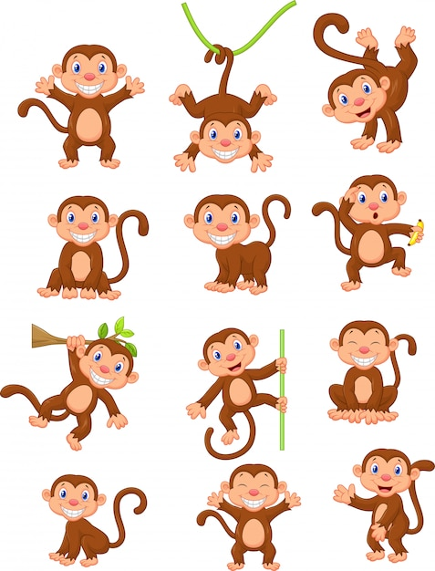 Gelukkige aap cartoon collectie set Premium Vector