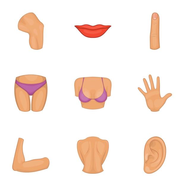 Geplaatste de pictogrammen van het vrouwenlichaamsdeel, beeldverhaalstijl Premium Vector