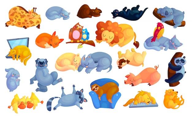 Geplaatste de stickers van het wild en huisdierenbeeldverhaal. Premium Vector