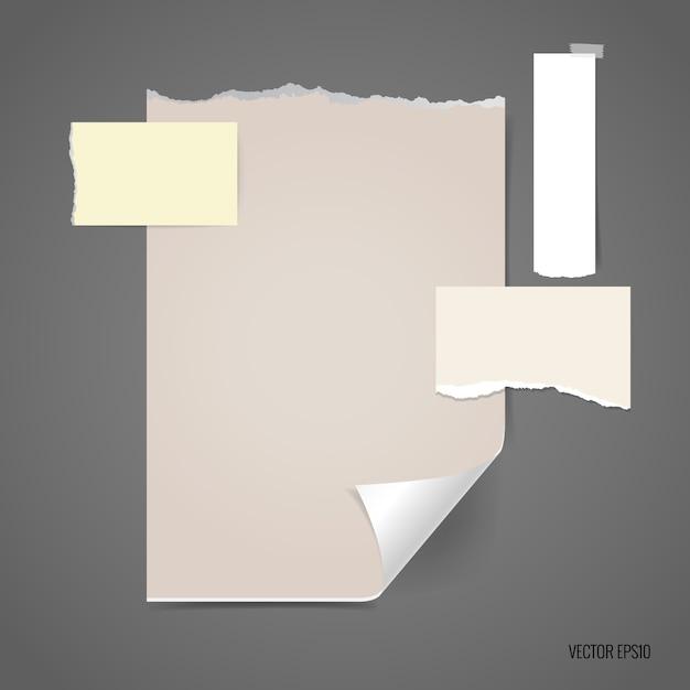 Gescheurd papier met verschillende maten Gratis Vector