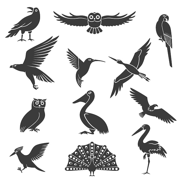 Gestileerde vogels silhouetten zwarte set Gratis Vector
