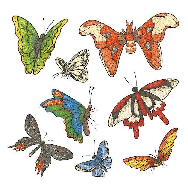 Getextureerde kleur instellen illustratie. verschillende tropische vlinders vliegen en zitten. omtrek tekenen schets gekleurde kit getekend in inkt Premium Vector