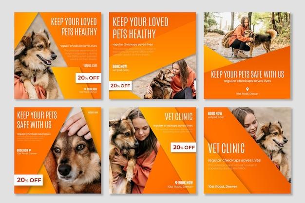 Gezonde huisdieren veterinaire kliniek instagram-berichten Premium Vector