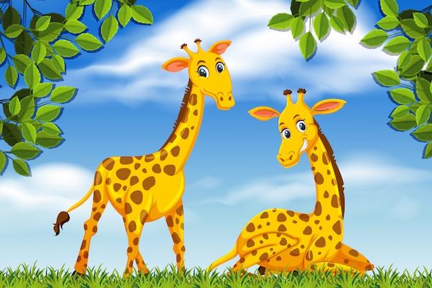 Giraffen in jungle scene Premium Vector