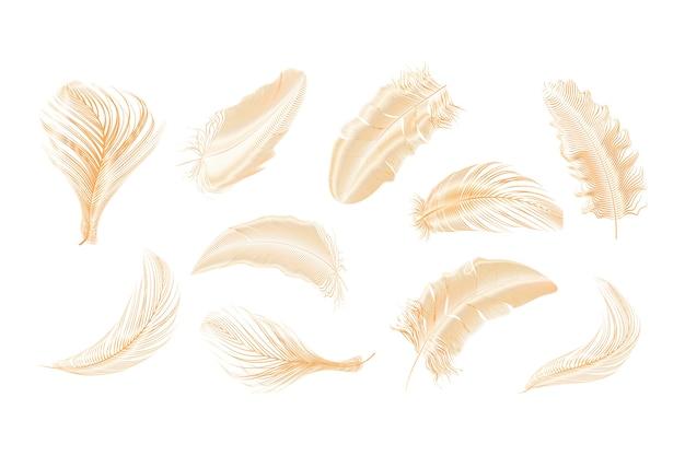 Gouden veren collectie ingesteld op een witte achtergrond. Premium Vector