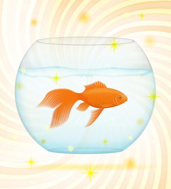 Gouden vis in een transparant aquarium. Premium Vector