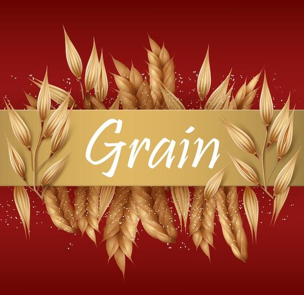 Graan, granen en aartjes of oren tarwe, gerst, haver en rogge met gouden banner voor tekst geïsoleerd op rode achtergrond Premium Vector