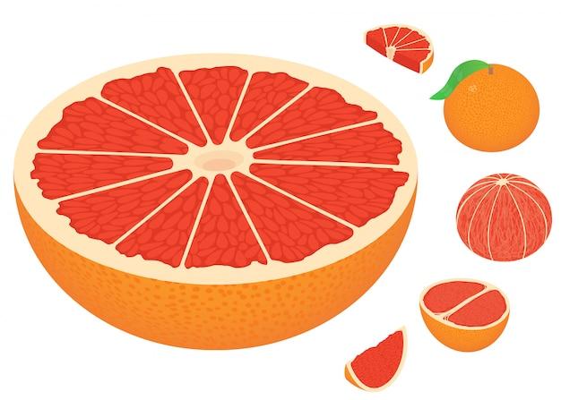 Grapefruit iconen set, isometrische stijl Premium Vector