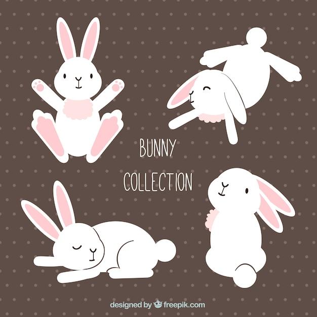 Grappig pasen konijnen in verschillende houdingen Gratis Vector