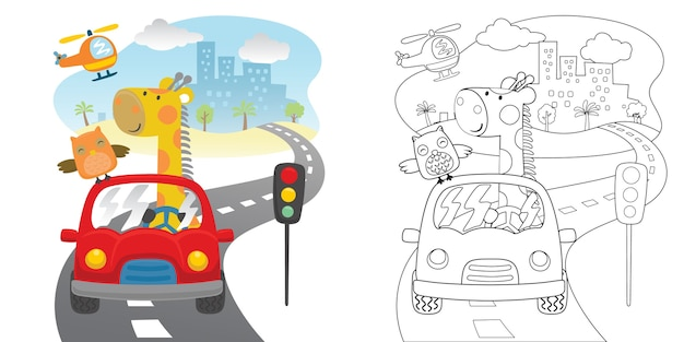 Grappige beer met uil op rode auto in de weg Premium Vector