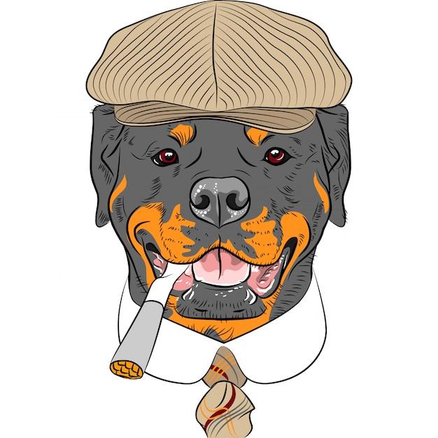 Grappige cartoon hipster hond rottweiler Premium Vector
