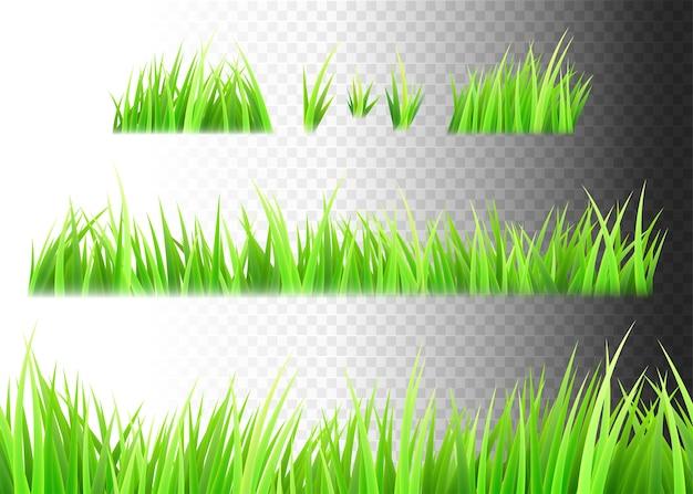Gras geïsoleerde set. plukjes gras. Gratis Vector
