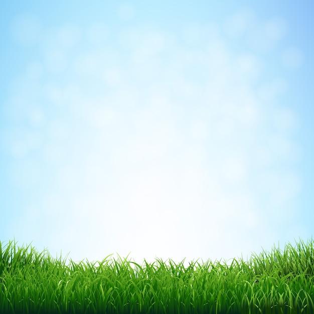 Gras met blauwe hemel met verloopnet, illustratie Premium Vector