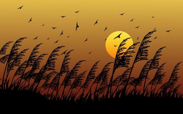 Grassilhouet in zonsondergang met vliegende vogels Premium Vector
