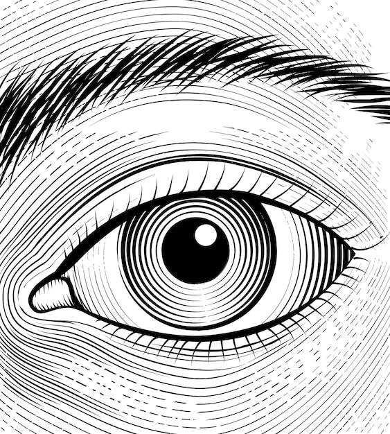 Gravure van menselijk oog. schets ogen close-up op een witte achtergrond. Gratis Vector