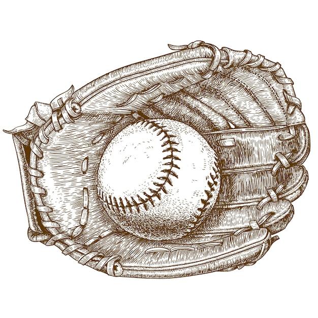 Gravureillustratie van honkbalhandschoen en bal Premium Vector