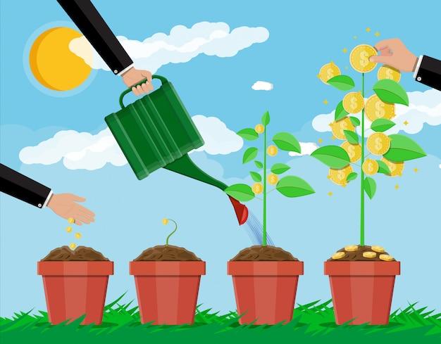 Groeiende geldboom. stadia van groei. Premium Vector