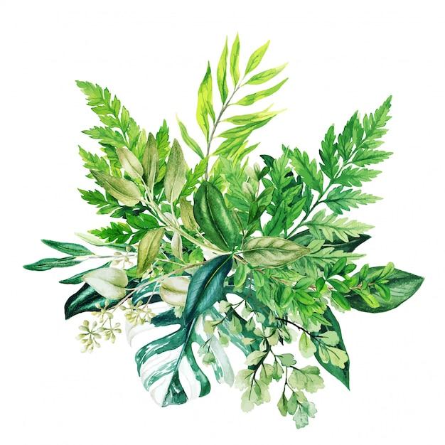 Groen decoratief boeket, samengesteld uit frisgroene bladeren Premium Vector