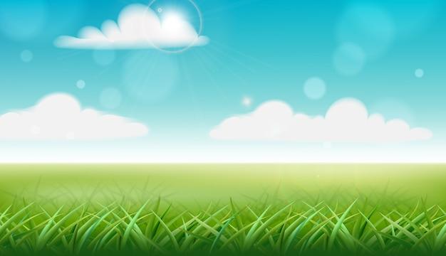 Groen gras en blauwe hemel met wolken Gratis Vector