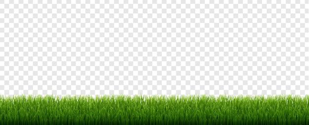 Groen gras grens met geïsoleerde transparante achtergrond Premium Vector