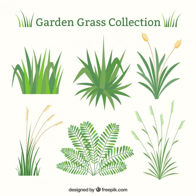 Groen gras set in plat design Gratis Vector