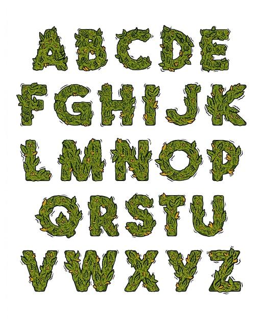 Groen marihuana-alfabet met lettertypen in wiet, cannabis, hennep, stilering van knoppen. Premium Vector