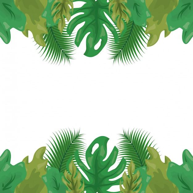 Groen tropisch blad met twee tinten groen, natuurlijk patroon Gratis Vector