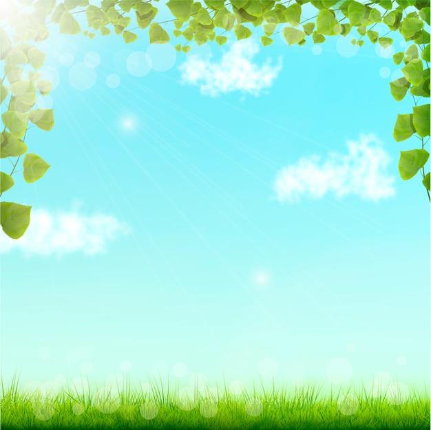 Groene bladeren op blauwe hemelachtergrond Premium Vector