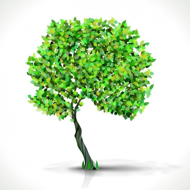 Groene boom Gratis Vector